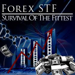 Forex stf v2