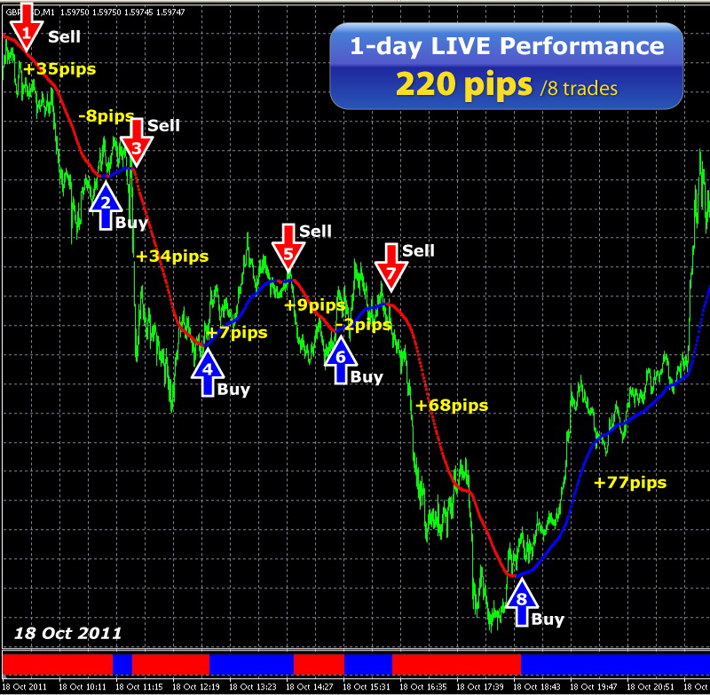 Forex nation review