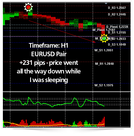 forex pips optimizer results