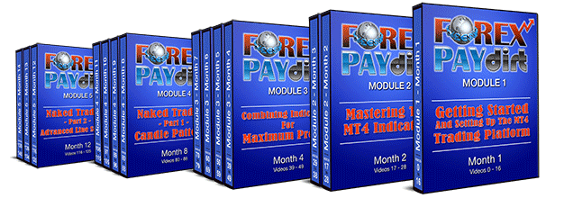 forex paydirt modules