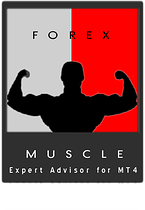 forex muscle robot