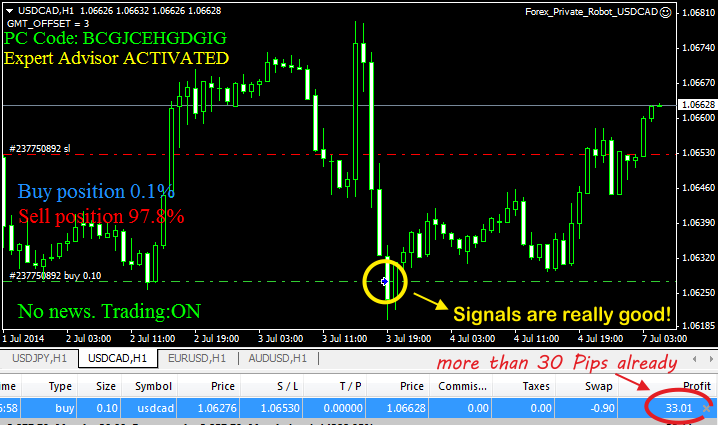 forex private robot on chart