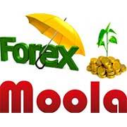 forex-moola