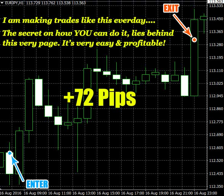 fast-fx-profit-trading-results