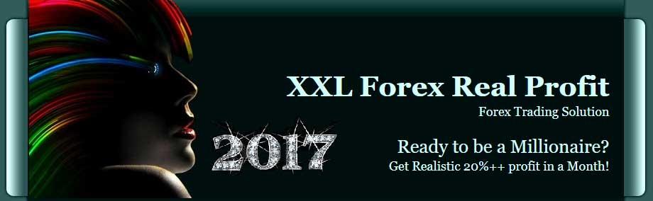Xl forex