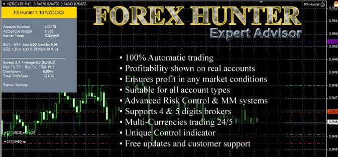 Forex hunter strategy v8 finanzen net